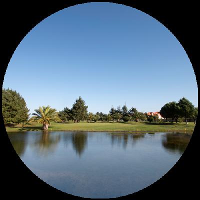 campo pretium golf pedreña la junquera